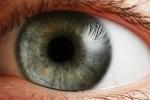 1280px-Eye_iris