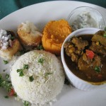 Lamb curry at Hidden Forest Cafe